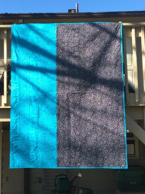 Coin quilt - back